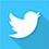 Twitter - icono