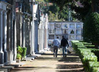 Traballos no cemiterio de San Amaro 3